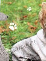 Вязание для собак мелких пород спицами – Вязание для собак мелких пород спицами