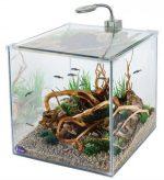 Нано аквариум фото – запуск, оформление, выбор рыбок и растений, фото-видео обзор