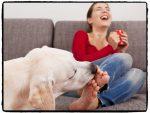 Почему собака вылизывает ноги человеку – Почему собака лижет ноги и что это значит?
